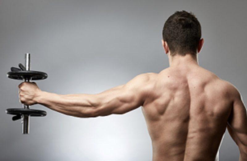 筋トレ】初心者は前腕を鍛えることで女の子にモテるかも。気になる筋肉NO1はコレ
